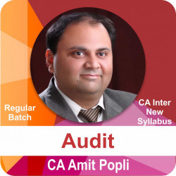 CA Inter Audit Regular Batch New Syllabus